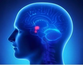 pituitary adenomas in iran